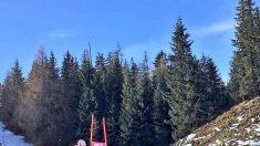 Ski alpin/Wengen/Combiné: deuxième victoire de l'année pour Marco Schwarz