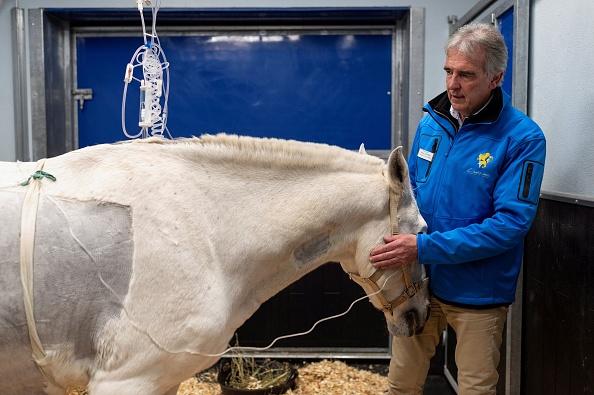 France: une clinique 5 étoiles pour chevaux aux portes de Lyon