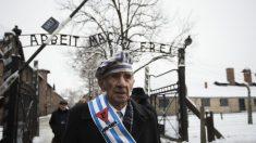 Le taux d'assassinats de l'Holocauste nazi est bien plus élevé que ce que l'on pensait et les chiffres n'ont baissé que lorsqu'il n'y avait plus personne à tuer