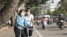 La pollution de l'air va-t-elle nous rendre bêtes ?