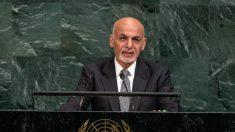 Afghanistan: manifestations pour réclamer la paix