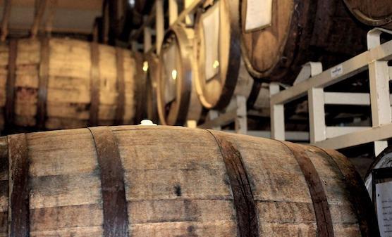 Un chêne âgé de 350 ans a été abattu pour faire mûrir des vins d'exception