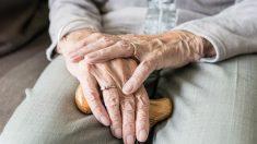 Violences sur une dame de 98 ans en Ehpad : l'aide-soignant a reconnu sa responsabilité