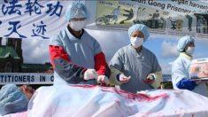 Un prisonnier d'opinion tué à la suite d'un prélèvement d'organes forcé - sa fille réussit à s'évader de Chine pour témoigner