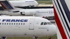 Un chien est retrouvé mort dans la soute d'un avion d'Air France