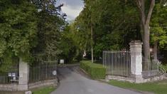 Troyes : rare naissance de poulains jumeaux