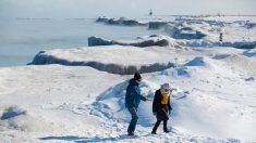 Photos : le lac Michigan est couvert de superbes éclats de glace