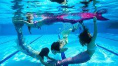 Ondulantes et scintillantes: des nageuses à l'école des sirènes