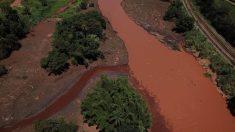 Rupture d'un barrage au Brésil: deux mois après,