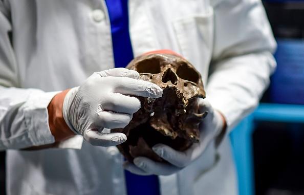 Irlande: le crâne d'un croisé momifié retrouvé par la police