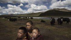 La « Révolution culturelle » chinoise pourrait réapparaître au Tibet