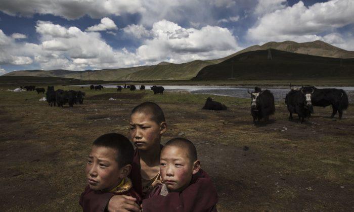 La «Révolution culturelle» chinoise pourrait réapparaître au Tibet