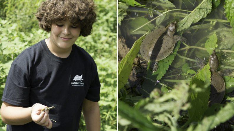 À 12 ans, il parcourt 3000 km pour sauver les tortues menacées