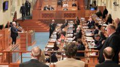 Le Sénat tchèque adopte une résolution condamnant les violations des droits de l'homme en Chine