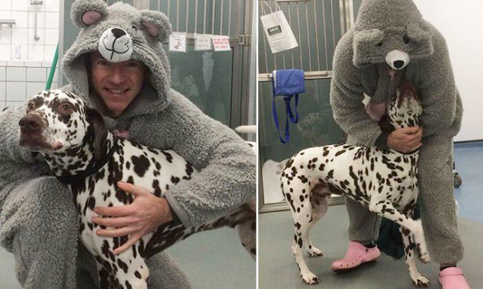 Un chien blessé refuse de laisser le vétérinaire s'approcher, jusqu'à ce que ce dernier enfile une combinaison de souris géante