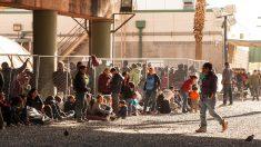 États-Unis : plus de 3 000 cas de familles frauduleuses identifiés par la police des frontières
