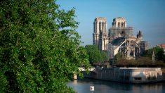 Notre-Dame : des dons et un concours international pour rebâtir la cathédrale en cinq ans