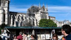 A l'ombre de Notre-Dame, un