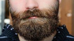 La barbe humaine transporte plus de bactéries que le pelage des chiens