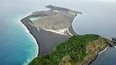 La vie continue de prospérer sur une île mystérieuse qui est apparue dans l'océan Pacifique en 2014