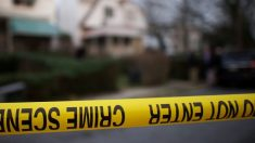 Cinq chiens vont être euthanasiés après avoir attaqué et tué un garçon de 14 ans