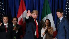 Trump crée une économie mondiale de marché (presque) libre