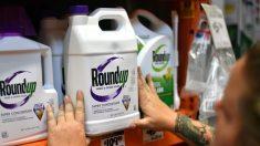 Nouveau procès Roundup: Monsanto (Bayer) condamné à verser 2 milliards de dollars