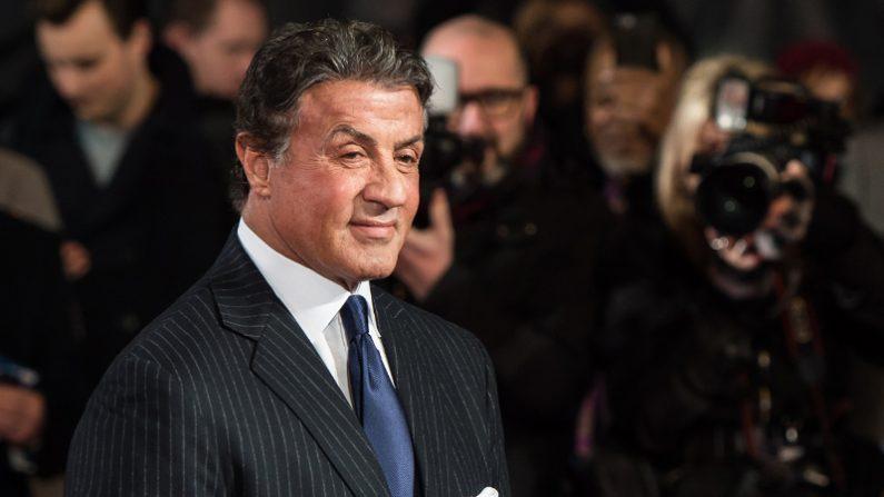 Sylvester Stallone a gardé les deux tortues dans «Rocky», et elles ont maintenant 45 ans!