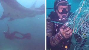 Une raie manta géante s'approche d'un plongeur pour lui demander de l'aide