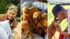 Un homme qui possède 27 chiens est atteint d'un cancer en phase terminale et implore les gens d'adopter sa famille à fourrure