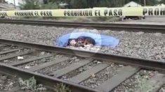 Un chien fidèle refuse de partir et se blottit à côté de son maître, décédé après avoir été heurté par un train