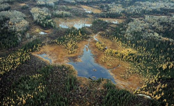 Canada: persistance du DDT dans des lacs, près de 50 ans après son interdiction (étude)