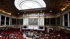 Notre-Dame: trois mois après l'incendie, un projet de loi pour lancer la restauration